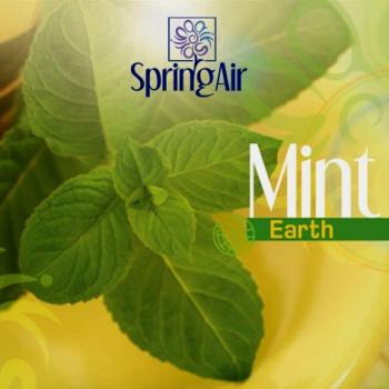 Náplň do osvěžovače - SpringAir Mint