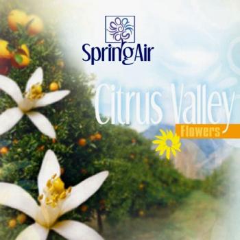 Náplň do osvěžovače - SpringAir Citrus Valley