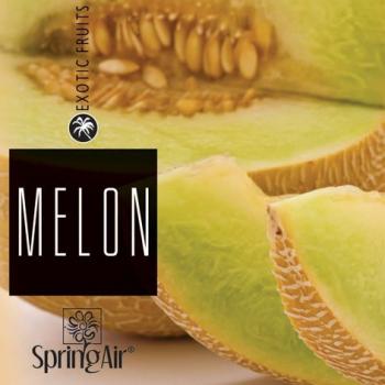 Náplň do osvěžovače - SpringAir Melon