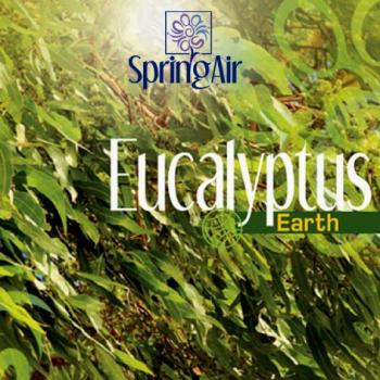 Náplň do osvěžovače - SpringAir Eucalyptus