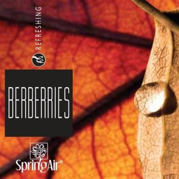 Náplň do osvěžovače - SpringAir Berberries
